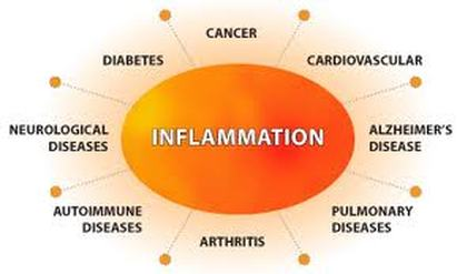 Image result for inflammation